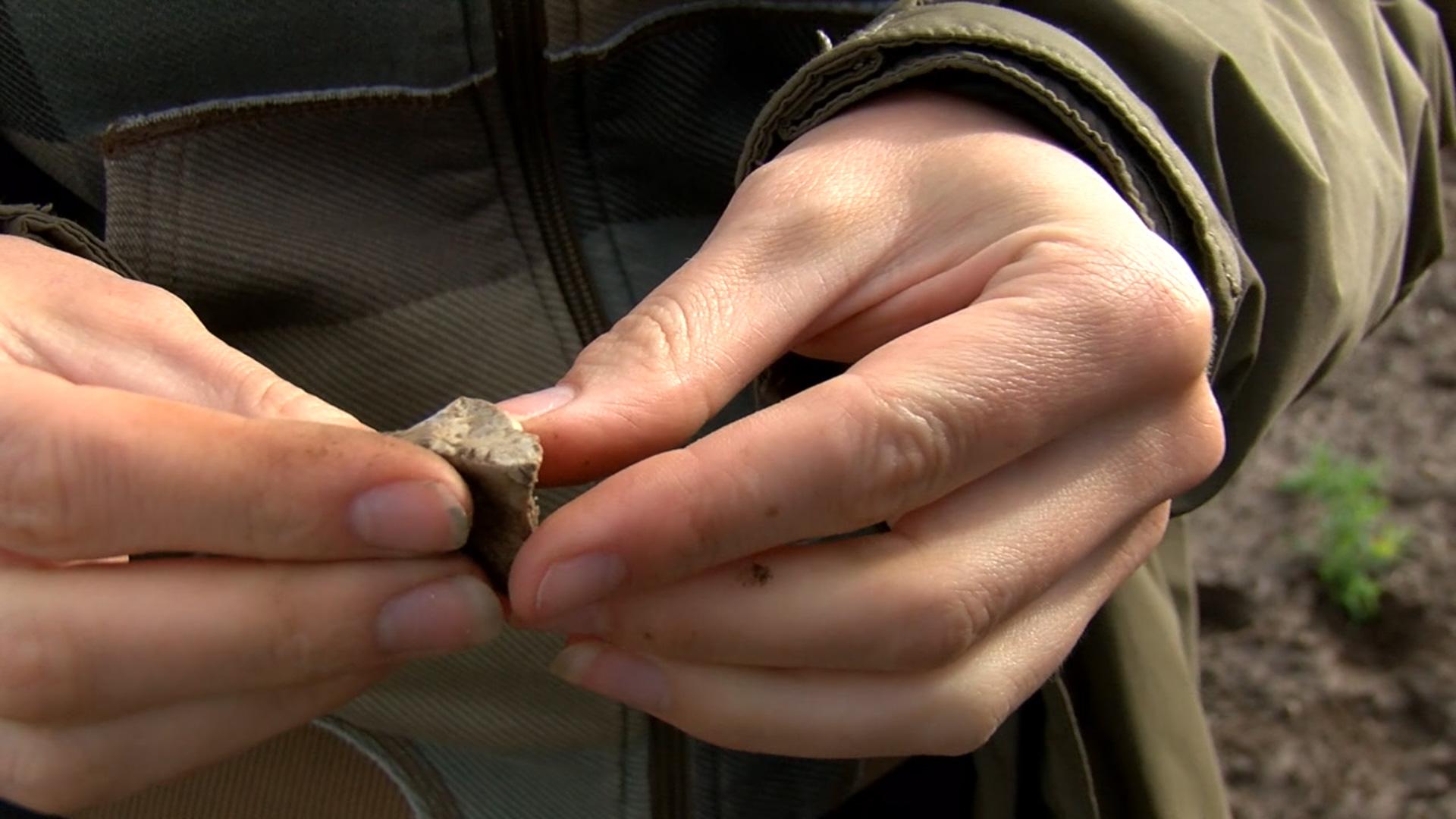 Burtnieku ezers akmens laikmetā bijis viens no galvenajiem apdzīvotības centriem Latvijā