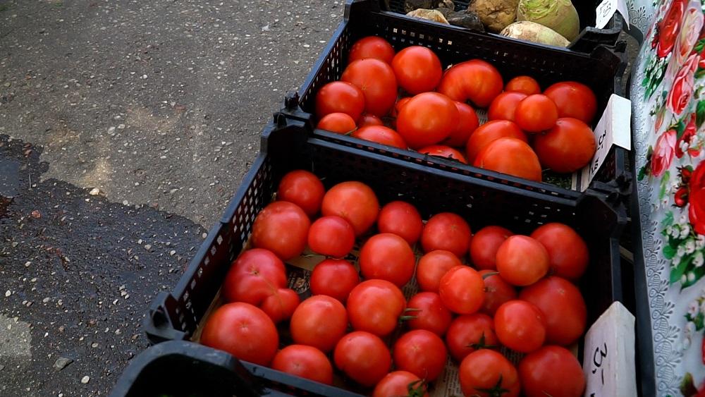Tomātu raža solās būt par 20 procentiem mazāka