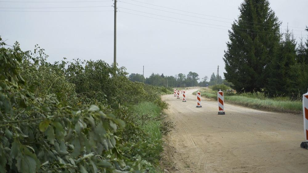 Protestē pret koku nozāģēšanu, izbūvējot ceļu uz Ļaudonu