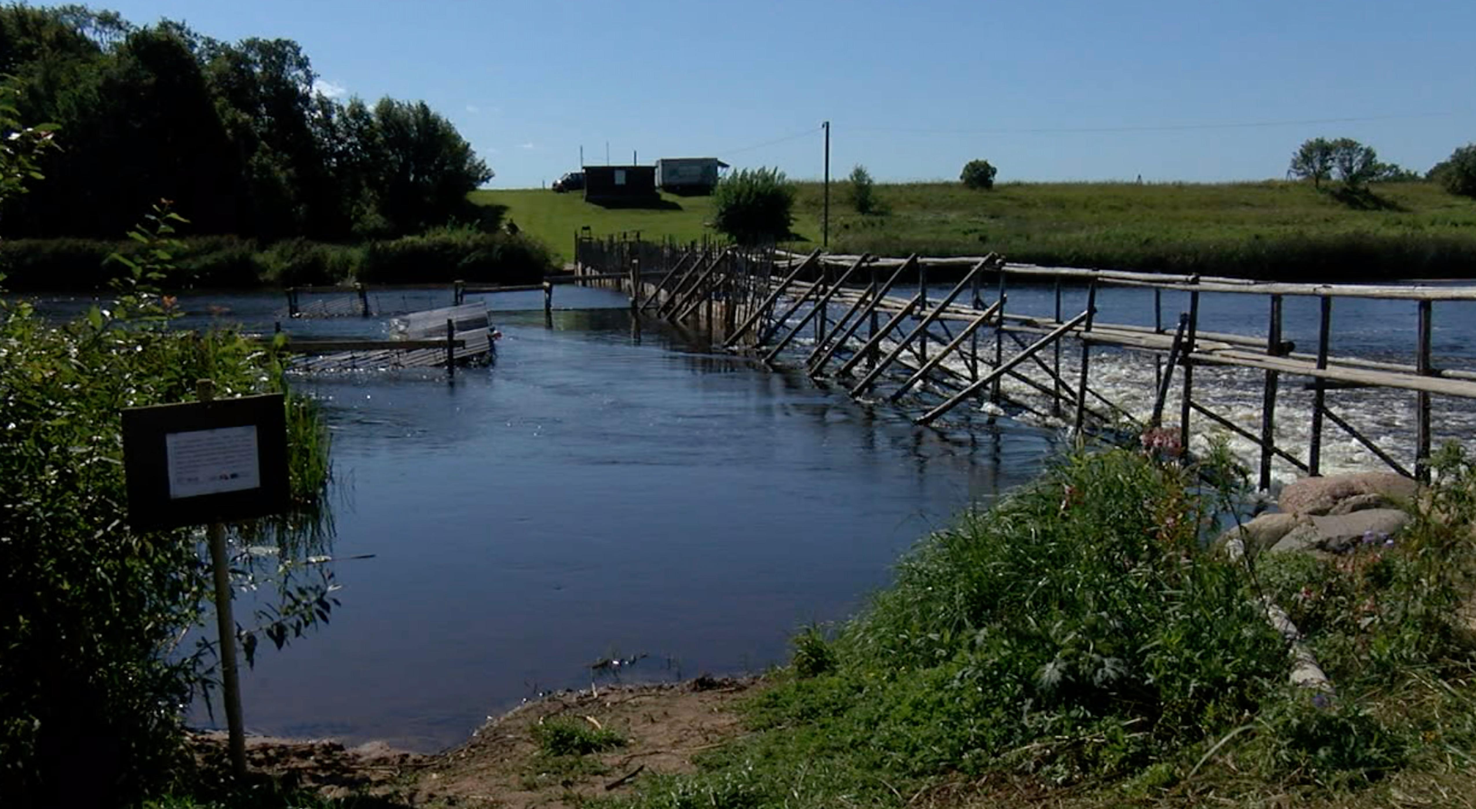 Salacas upē ar inovatīvu metodi skaitīs lašus un taimiņus